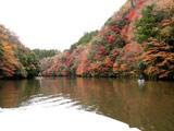 亀山湖 紅葉狩りクルーズ