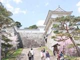 Kasumi ga Castle