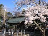 Soma Nakamura Castle