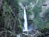 Neo Falls