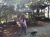 The Mt. Kobo Trekking