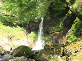 Ane Falls