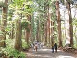 Togakushi Shrine Okusya