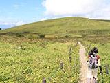 Hiking at Kirigamine