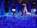 Caretta Illumination 2011