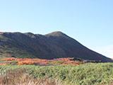 Mt. Gassan Trekking