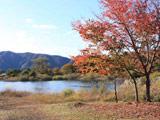 本栖湖紅葉